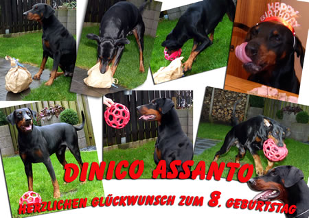 Dinico Assanto